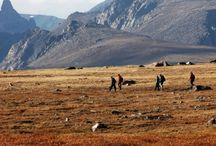 Hike Montana! / by FOX 28 - myfoxspokane