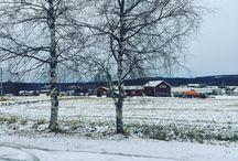 Instagram En liten snabb tillbakablick till en härlig vinterdag i Umeå med Sägen! #sägenontour Ikväll klockan 19:00 intar vi St Agnes kafé i Göteborg.