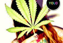 YOLOLAND* / Daj się ponieść pozytywnym barwą, emocją i łap życie za rogi!!! YOU ONLY LIVE ONCE, RIGHT?!