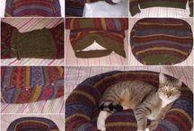 pisica diferite