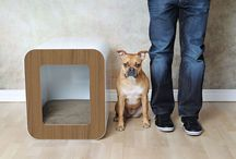 Dog House Design