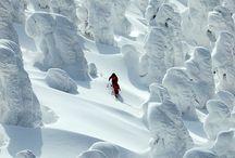 Snow / Paesaggi con tanta tanta neve