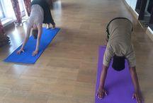 Fitness Training Programme