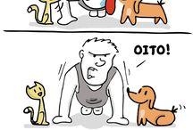 tirinhas cães e gatos