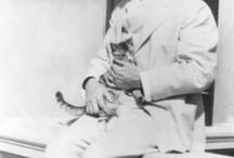 Cat lovers / In recognition of Poppy and her outstanding achievements in the field of human companionship.