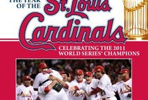 All Things Cardinals / by Karen Elmore