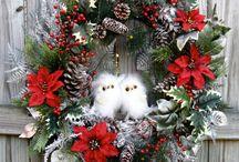 Julia s owls