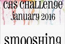 HLS January 2016 CAS Challenge