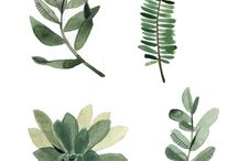 greenery botanical art