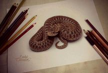 Amazing!!!Drawings / All sorts of mind blowing, realistic, fantastic, beautiful and amazing drawings one can find.....