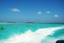 Maldives on a Budget by Woodyworldpacker / Maldives on a budget is possible! stay at this beautiful destination in luxury for a budget price! how? visit our website to discover more https://www.woodyworldpacker.com/destinations/maldives