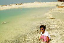 Love Beaches Global
