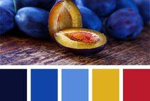 Coloring Palettes