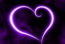 purple#lila#violett