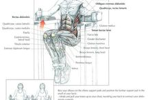 a lot of exercises....