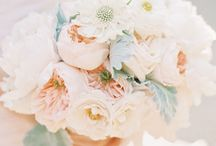 Wedding Flowers / by Laurie Antonich