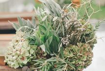 Client {Eloise} / by Little Gray Station - Wedding and Event Design