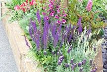 Garden Ideas / by Katherine Webb