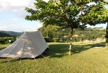 Kamperen zoals kamperen bedoeld is / Kamperen op gras, ruime plaatsen en autovrij. Alleen doek als buren en rust gegarandeerd. Mooier kan het bijna niet.