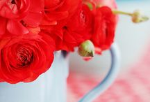Labola Loves Flowers : Red + Orange Brights