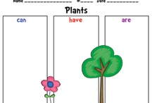 Plants & Animals Unit / by Meredith Fonseca