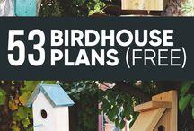 Bird houses Budky