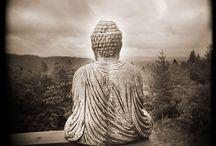 Breathing Deeply / Buddhism, mindfulness, intention / by Miranda Hersey