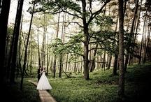 weddings Daniel Frymark / www.wedings.danielfrymark.com