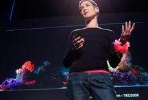 TED talk favs