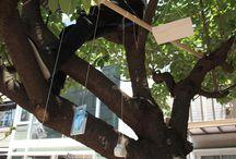 treehouse & design / treehouses & designers