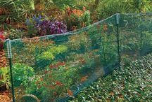 Garden / by Maggie Scott