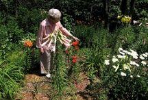 Outdoors for Seniors