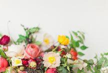 Flowers / Красота в чистом виде