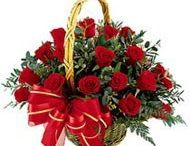 Send flowers to Begusarai /  These flowers is a rich and romantic way to create a memory which your dear one will always cherish for a memorable gift for occasion which are very dear to you like anniversary, birthday and any other occasion. http://www.onlinedelivery.in/flowers-delivery-in-begusarai.aspx
