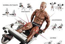 Man Muscle