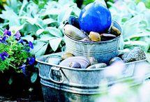 garden / by Patricia Camp