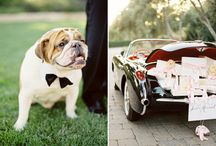 Sites to Check Out / While perusing pinterest, sometimes we find some pretty neat wedding ideas, here is a collection of some  awesome websites and blogs to check out for wedding inspiration.