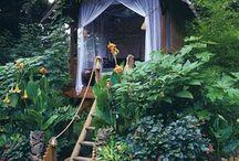 Casas De Árbol / Casa de muñeca