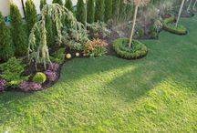 Ogród M.