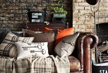 Living Room Ideas - Bright and Adventurous / This living room decore was inspired by the bright, adventurous colors that often appear in the Western landscape.