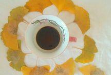 1 mis desayunos y fotos al despertar