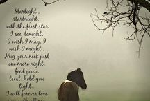 Horses Leave Hoofprints on the Heart / Horses are my life - they are my best friends - my soul mates ! Feel free to show your love for horses,ponies,donkeys,mules ! Pin away