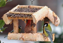 Vogelfutterplatz