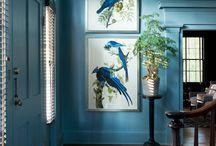 Birds, Bugs and Botany