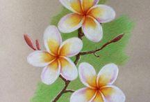 soft pastel drawing