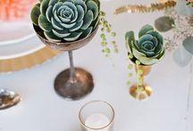 Cactus @ a wedding