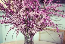 Floral Arrangements / by Joy Hearron