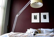 Decorating the Guest Room / Ideas for making my guest room the perfect home away from home. / by Monica M