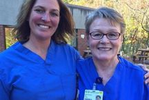 """#CapeCod Nurse / Did you know, Barnstable was recently ranked 15th """"best city"""" across the country for registered nurses! We couldn't be happier to share the great work being done by the men and women who make up Cape Cod Healthcare's nursing team. So we want to know, why do you love being a #CapeCodNurse?"""