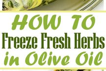 Create // Freezer Meals and Preservation